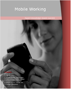 Remote Working Publication